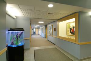 Curtis-Ivey---Aquarium
